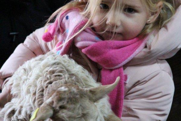visite à la ferme-rencontre avec bergers-dégustation produits de la ferme-Visit in the farm-Meeting with shepherds-Tasting products of the farm