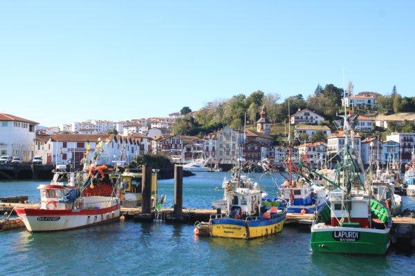 la criée, conserverie, ciboure, itsas, ziburu, pêche, bateaux, fish market,
